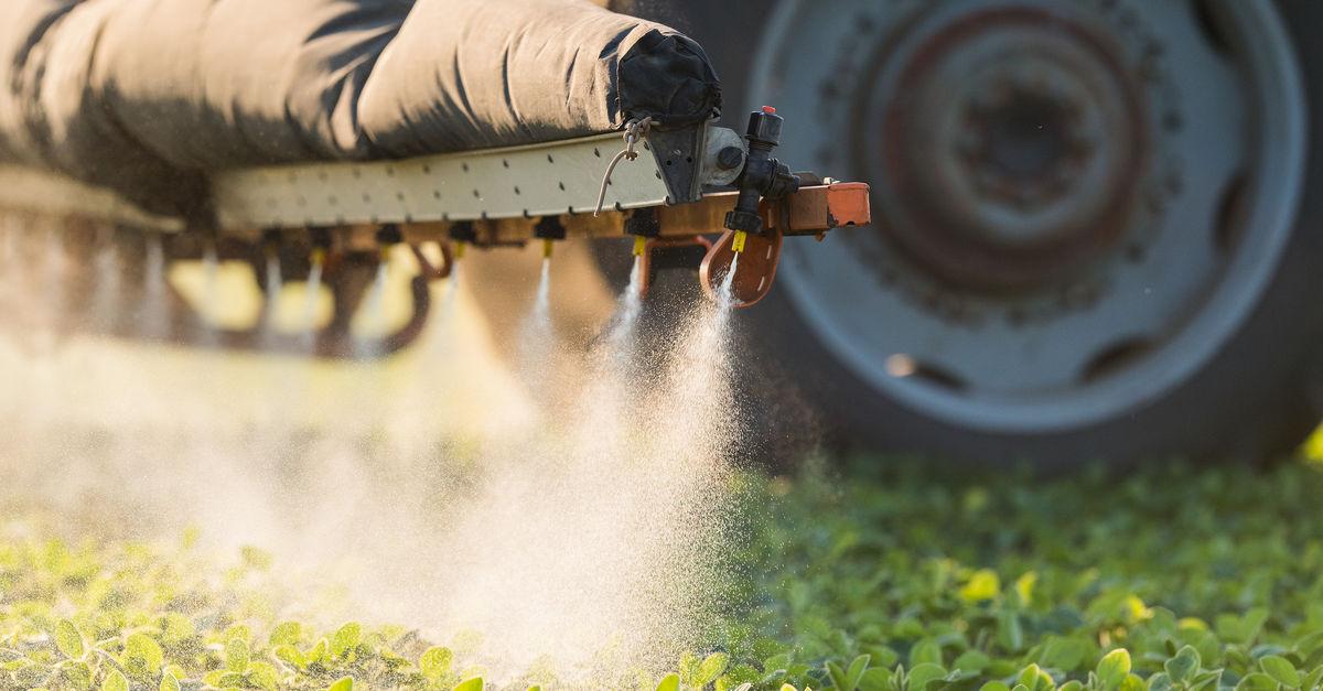 Aquí en Rojas, estos pesticidas, ¿serán responsables de las enfermedades respiratorias que afectan a una gran cantidad de vecinos?