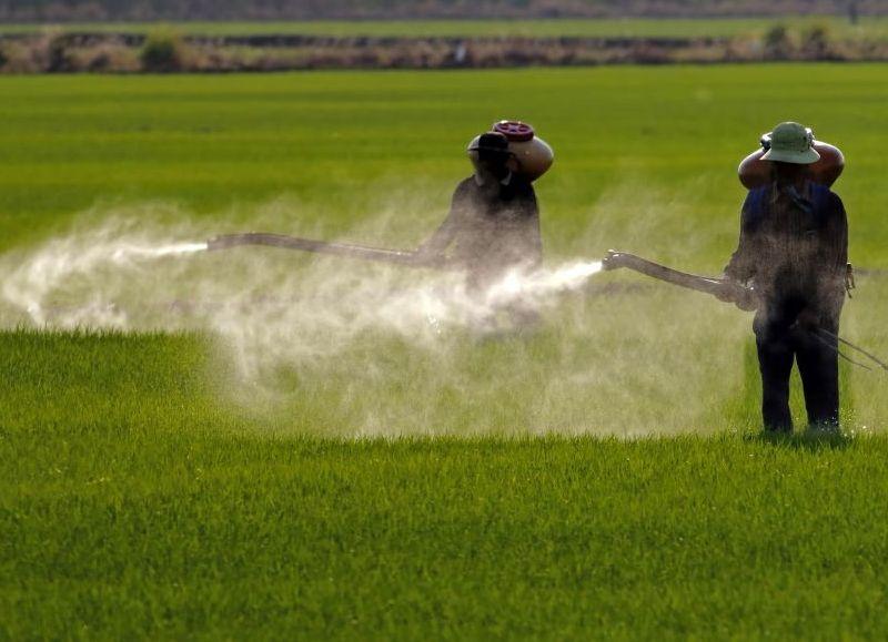 Bayer ya sufrió tres condenas en California, por las cuales debe pagar indemnizaciones millonarias.
