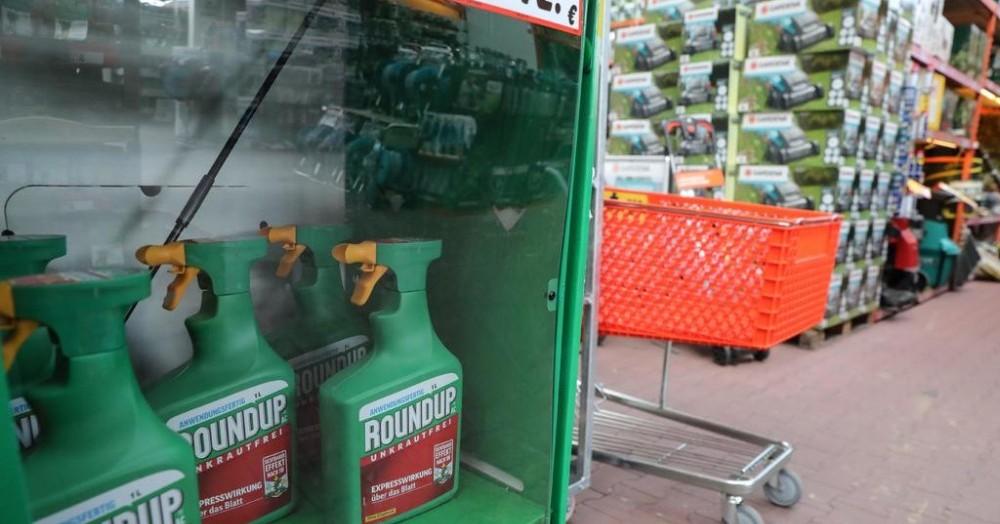 Bayer adquirió el año pasado al fabricante estadounidense de transgénicos Monsanto, que produce el herbicida Roundup.
