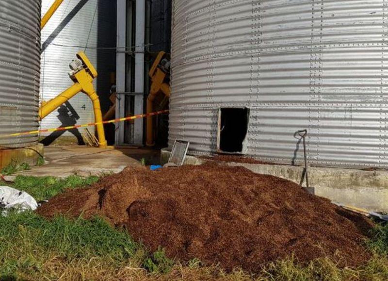 Quedaron atrapados al derrumbarse una planta de silos (fotos: Democracia).