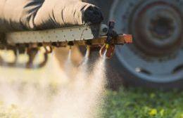 Pergamino: La Justicia ordenó suspender la fumigación con agroquímicos