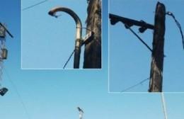 Siguen robando cables: ahora en el Parque General Alvear