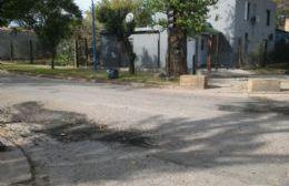 El área de Servicios Urbanos bachea las calles.