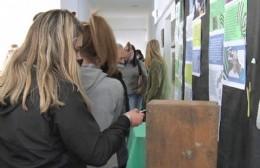Escuela Secundaria 5: Abrió votación para su nombre