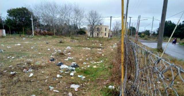 Se acumula basura en un lote de calle Azara