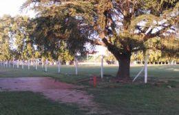 Avanza la instalación del alambrado olímpico en la cancha del Parque General Alvear