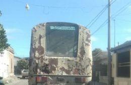¿Los vehículos municipales tienen la VTV al día?