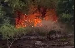 Denuncian fuego intencional en la costa del Río Rojas