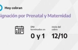 Calendario de pago de la ANSeS