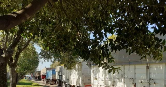 Múltiples quejas por el intenso movimiento de camiones en la zona de Avenida Helguera