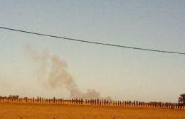 Combaten un incendio en la zona rural de Santa Felisa