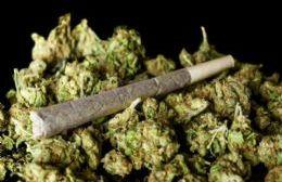 Detienen a un joven de 18 años por tenencia de marihuana