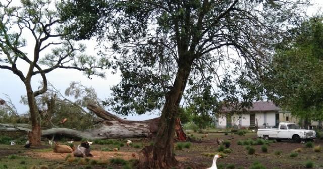 Carabelas sufre las consecuencias de la fuerte tormenta